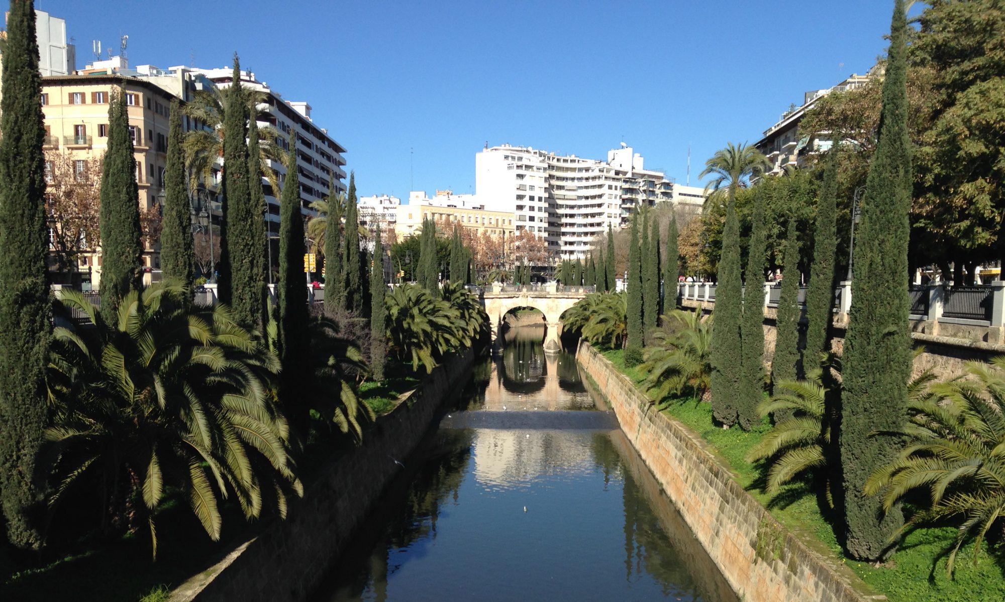 Academia Mallorca